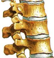 A reumatológia a mozgásszervek megbetegedéseivel a9c2519f24